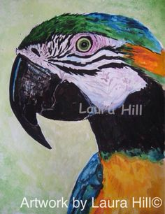 Beautiful Macaw Parrot Watercolor Giclee by ArtworkbyLauraHill, $10.00