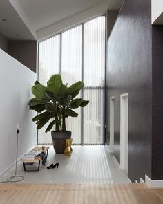 Luxaflex® Vertical Blinds are stylish and practical with all the advantages of beautiful light control and privacy.