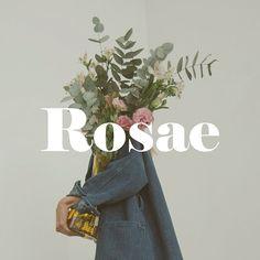 Rosae by Candela Soto on Behance Graphic Design Branding, Digital Art, Behance, Creative
