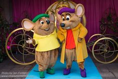 The theme park character versions of Jaq and Gus are gray, yet in the movies and other appearances, they are brown. Description from disney.wikia.com. I searched for this on bing.com/images