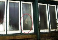Demolition workers photograph 'ghost of former guesthouse worker' Demolition workers were given a fright after photographing a ghostly figure peering through the window of a derelict Victorian guesthouse in Kendal, Cumbria. Real Haunted Houses, Most Haunted, Haunted Places, Ghost Images, Ghost Pictures, Creepy Pictures, Paranormal Pictures, Ghost Caught On Camera, Old Victorian Homes