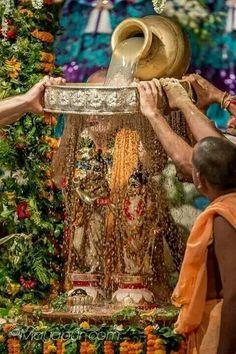 Doing Abhishek Puja to Lord Krishna and Radha Krishna Statue, Krishna Leela, Cute Krishna, Jai Shree Krishna, Radha Krishna Photo, Krishna Radha, Lord Krishna Images, Radha Krishna Pictures, Krishna Photos