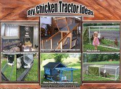 DIY Chicken Tractor Ideas | Happy House and Garden Social Site