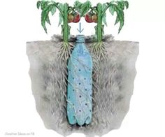 Poke holes in pop bottle, bury in pot when planting leaving neck exposed...water roots of pot by filling bottle with water...water rest of pot as usual