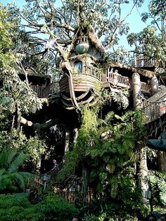 Swiss Family Treehouse @ Adventureland, Disneyland it isn't swiss family anymore now...renamed to Tarzans tree house