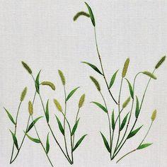 #야생화자수 #강아지풀 #꿈소 #꿈을짓는바느질공작소  #자수 #자수타그램 #embroidery #handembroidery #embroideryart #threadpainting #needlepainting #hoopart #stitchart #dmc #wildflower #foxtail #greenbristlegrass #handmade