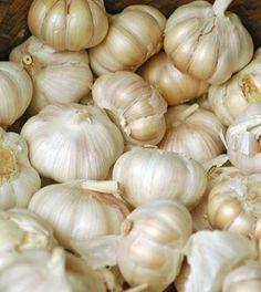 L'aglio previene il cancro e distrugge le infezioni. Perché i medici non lo…