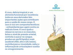 O coco, delícia tropical, é um alimento funcional por excelência.