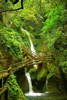 The path to taoist temples of QingCheng Mountain, Sichuan, China (by sylvain.lamour).
