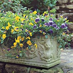 Container gardening idea.