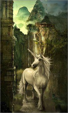 Einhorn Welt: Poster & Kunstdruck von Marie Luise Strohmenger