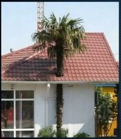Trust Me Im an Engineer 50 Construction Fails Best of Web Shrine Architecture Fails, Amazing Architecture, Building Fails, Construction Fails, Construction Design, Design Fails, You Had One Job, Screw It, Unusual Homes