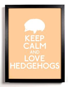 "Keep Calm and Love hedgehogs - there is truly one of these ""keep calm"" posters for everything"