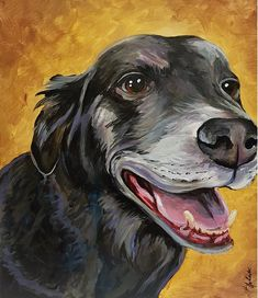 Winnipeg wine and paint parties. Party with your friends, learn to paint, make a masterpiece. Painting Apron, Paint Your Pet, Cartoon Painting, Pet Photographer, Paint Party, Learn To Paint, Pictures To Paint, Special Events, Canvas