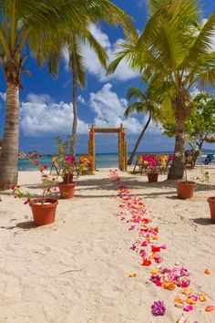 Our wedding site in St. Thomas at the Bolongo Bay Beach Resort!!