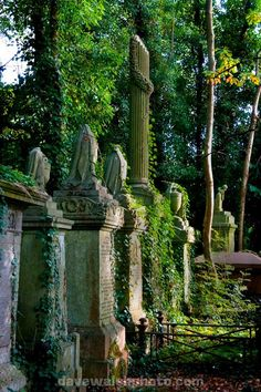 Highgate Cemetery. I swear its half the reason I want to go to London so badly.