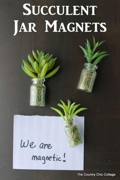 Succulent Jar Magnets