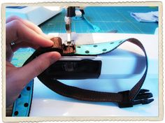 DIY Dog Collar. SS: Pretty much any doggy stuff would be lovely. I could get 12 days of dog stuff and be happy.