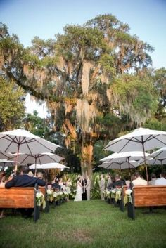 Ceremony at Magnolia Plantation and Gardens | Designed by Engaging Events | Charleston Wedding