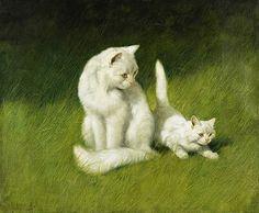Angora Cat and Kitten - Arthur Heyer