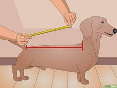 How to Make a Dog Coat (with Pictures) - wikiHowYou can find Dog coats and more on our website.How to Make a Dog Coat (with Pictures) - wikiHow Dog Coat Pattern Sewing, Dog Sweater Pattern, Dog Pattern, Small Dog Clothes Patterns, Small Dog Coats, Fleece Dog Coat, Dog Jumpers, Dog Wear, Dog Sweaters