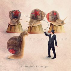 Circus snails Animal photography Snail tamer by PhotographyDream