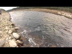 Landlocked Salmon fishing - Peche a la Ouananiche