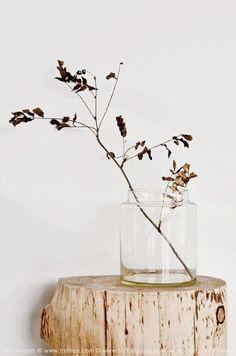 葉っぱを飾って瑞々しいインテリアに☆リーフアレンジメントを楽しむポイント♪ | folk