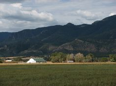 Hay ranch with water rights for sale in Colorado