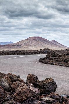 Road trip - Lanzarote - Canary Islands - Wild Birds Collective