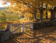 Old Orchard Gate In Hillsborough, NH