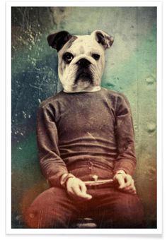 Bad Dog als Premium Poster von John Keddie | JUNIQE