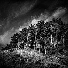 Trails of Wind by Bruno Mercier, Photography Gothic Landscape, Open Shutters, Snap Photography, Mystic River, Bronte Sisters, Favorite Movie Quotes, Wuthering Heights, Space Time, Great Photographers