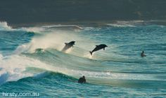 Surfing with the locals at Bronte Beach - Australia - amazing photo by Hirsty.com.au