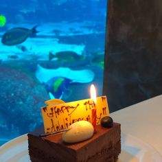 Ossiano, Dubaï - Restaurant Avis, Numéro de Téléphone & Photos - TripAdvisor Dubai Aquarium, Restaurants, Menu, Birthday Candles, Trip Advisor, Photos, Menu Board Design, Pictures, Restaurant