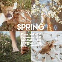 filter VSCO vscocam presets theme warm фильтры в�ко s.