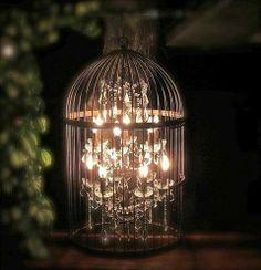 Love this! Little chandelier in a birdcage.