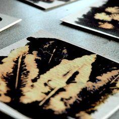 arteascuola: Листья распечатаны с отбеливателем