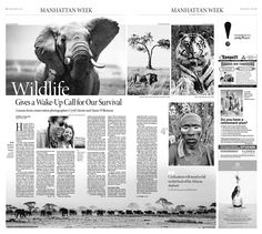 """His passion for life undeniable, """"Honoring life, is more important than any interpretation of life,"""" Cyril Christo continues.