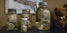Meet the artist. See the teddy bear skulls.