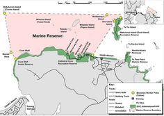 Marine reserve | Glass Bottom Boat