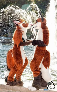 Photo by We Are Furries 2015