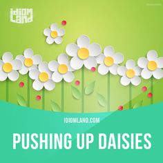"""""""Pushing up daisies"""" means """"to be dead"""". Example: If you talk to me like that again, you'll be pushing up daisies."""
