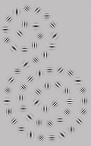 ガボール パッチ 効果 1日1回見るだけの視力改善法。「ガボールパッチ」とは?