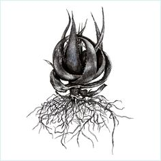 Aloe Vera Tree, Print Design, Superhero, Plank, Drawings, Fill, Inspiration, Game, Tattoos