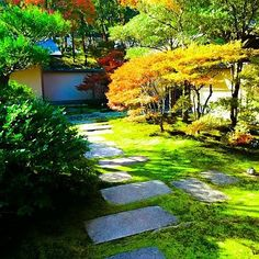 Roji the way to the tea room from waiting room.  Step on stones but not on moss there. . Do you like #matcha? I ama #master of #Japanese #zen #teaceremonywho have already entertained over 3000 guests by #tea #ceremony through my life. I am also only one #professional provider of#private tea ceremonyfor #traveller to Japan. When you visit Japan and wish a special #travel #experience of the deepest Japanese #traditional #culture you got to contact me or you will miss the biggest chance. I will…