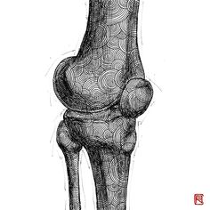 -Knee- from Human Body Study Series by Body Study, Office Pictures, Doctors, Human Body, Anastasia, Anatomy, Bones, Body Art, Contemporary Art