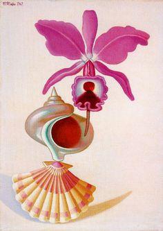 Naturaleza Viva. 1942. Óleo sobre tablero de artista. 42 x 30 cm. Obra de Maruja Mallo