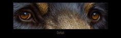 black bear painting - Google Search