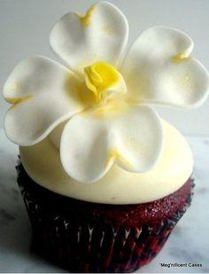 Spring Cupcakes    #cupcakes #Spring
